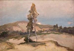 Iwan Trusz (1869 Wysocko – 1940 Lwów) Pejzaż z brzozami