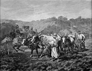 Juliusz Kossak (1824-1899), Mohort orze ziemię, w którą wbita jest szabla, 1882