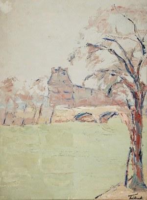 Włodzimierz TERLIKOWSKI (1873-1951), Motyw z Paryża - Widok na północne skrzydło Luwru