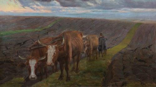 Kazimierz Lasocki, Orka, 1911