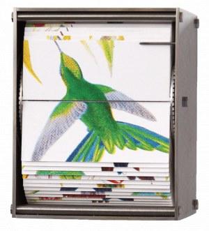 JUAN FONTANIVE Ornithology L, 2018