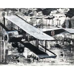 Bartek Pszon Samolot 2019
