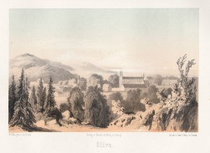 GDAŃSK, OLIWA. Panorama Oliwy, rys. i lit. Julius Greth, odbili bracia Delius w ...