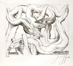GDAŃSK. Węgorze, rys. i ryt. Günter Grass (1927-2015); w lewym dolnym rogu ...