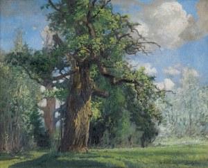 Wywiórski Michał Gorstkin, DĄB, 1917