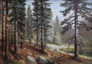 Konstanty Mackiewicz (1894-1985), Pejzaż leśny