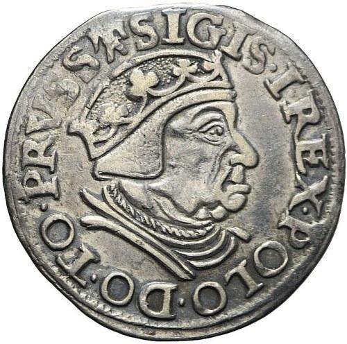 Zygmunt I Stary, Trojak 1538, Gdańsk, R3