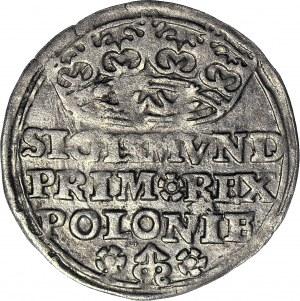 Zygmunt I Stary, Grosz 1528