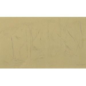 Adam  MARCZYŃSKI  (1908-1985), Studium drzew, przed 1947