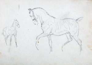 Karol Kossak (1896 Lwów-1975 Ciechocinek), Szkice konia