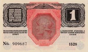Austria, 1 Krone, 1916, UNC, p49
