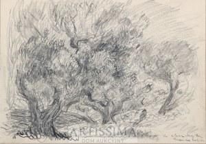 Eugeniusz Eibisch (1896–1987), Stare drzewa*