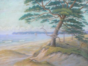 Artysta nioeokreślony (1 poł. XX w.), Pejzaż nadmorski