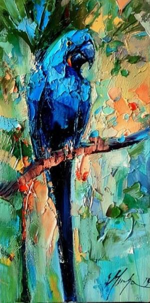 Mucha Grażyna - Papuga