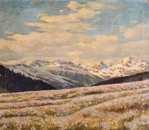 KWITNĄCA HALA, ok. 1930