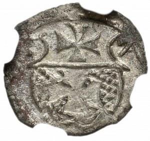 Zygmunt II August, Denar 1557, Elbląg - NGC MS60
