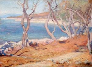 Stanisław Kamocki (1875 Warszawa - 1944 Zakopane), Brzeg morski/Drzewa oliwne – Cherso
