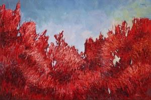 Olena Horhol Red, 2019