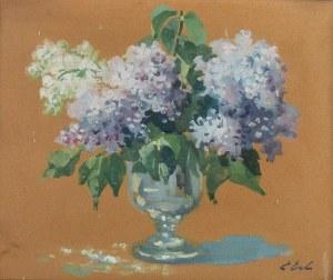 Erno ERB (1890-1943), Bzy