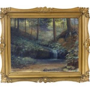 Feliks Kazimierz Wygrzywalski (1903-1966), Strumyk w lesie