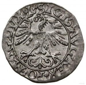 Półgrosz, 1561/1681, mennica Wilno; końcówki napisów L ...