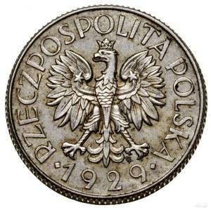1 złoty, 1929, Warszawa; nominał w liściastym ornamenci...
