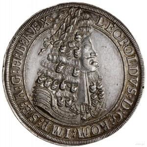 Talar, 1701, mennica Hall; Aw: Popiersie władcy w prawo...