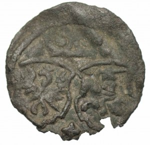 Zygmunt III Waza (1587-1632) - Denar 1623 Łobżenica