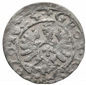 Zygmunt III Waza (1587-1632) - Grosz 1624 Bydgoszcz