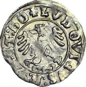 Ludwik Jagiellończyk 1516-1526, Półgrosz 1523, Świdnica