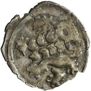 Śląsk, Księstwo Kłodzkie, Haszko z Waldsteinu z 1437 r., jednostronny halerz, Kłodzko