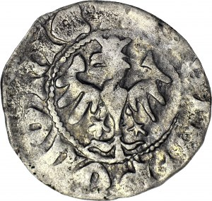 Władysław II Jagiełło, Półgrosz 1410-1412, typ XV, znak +