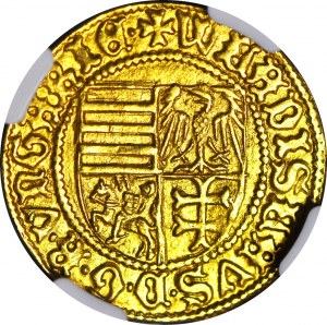 RR- Władysław Warneńczyk goldgulden 1441 r, pierwsza złota moneta z herbami Rzeczypospolitej