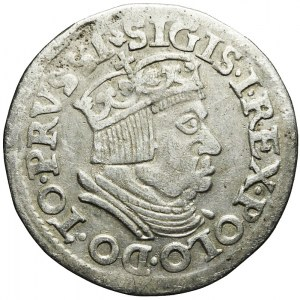 Zygmunt I Stary, Trojak 1537, Gdańsk