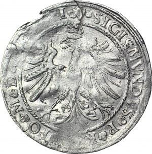 RRR-, Zygmunt I Stary, Grosz 1535 SIERPIEŃ