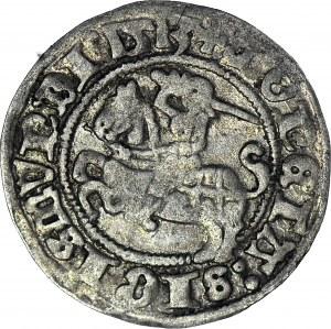 R-, Zygmunt I Stary, Półgrosz 1513, Wilno, PEŁNA DATA (zamiast 13), rzadki, R4