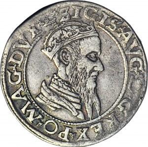 Zygmunt II August, Czworak 1565, Wilno