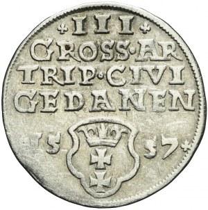 Zygmunt II August, Trojak 1557, Gdańsk, rzadki