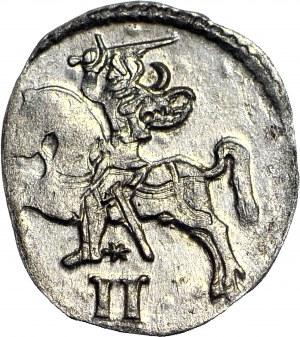Zygmunt II August, Dwudenar 1569, Wilno, menniczy