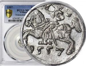 R- Zygmunt II August, Denar 1557, Wilno, R3, T.10mk