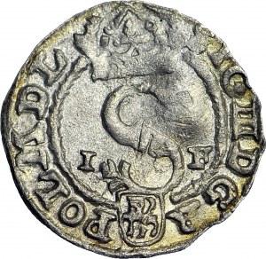 Zygmunt III Waza, Szeląg 1591, Olkusz, I-F, wczesny, piękny