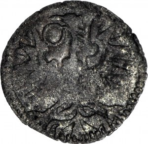 Zygmunt III Waza, Denar 1596 CWF, Wschowa, R8, T25
