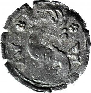RRR-, Zygmunt III Waza, Denar 1624, Kraków, brak notowań aukcyjnych