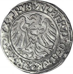RR- Prusy Książęce, Albrecht Hohenzollern, Grosz 1529, Królewiec, rzadki rocznik