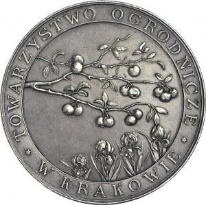 R-, Medal 1905, Towarzystwo Ogrodnicze w Kraków, srebro 50mm, oryginalne bicie