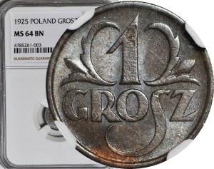 1 grosz 1925, menniczy, kolor BN