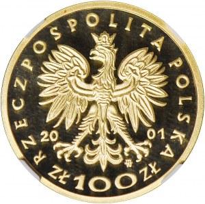 100 złotych 2001, Bolesław Krzywousty