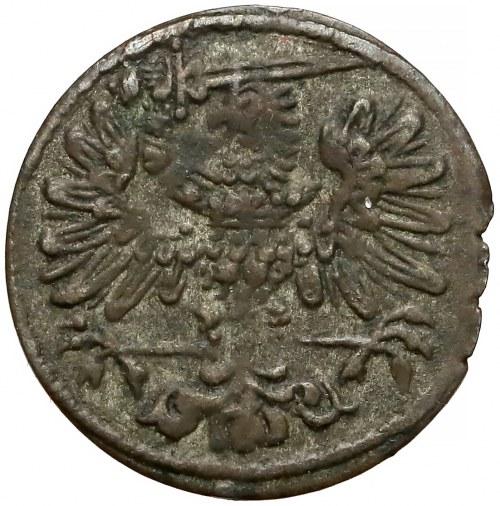 Zygmunt III Waza, Trzeciak Gdańsk 1613 - rzadki