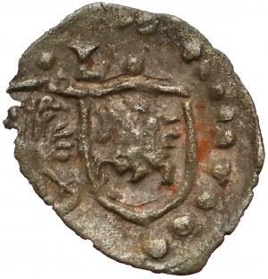 Zygmunt III Waza, Denar jednostronny Łobżenica bez daty - RZADKOŚĆ