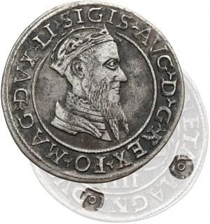 Zygmunt II August, Czworak Wilno 1568 - kółeczka - b.rzadki